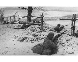 133-я стрелковая дивизия в боях на Дмитровской земле