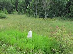 Лесной, Боевое захоронение и перезахоронение