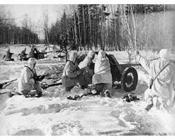 348-я стрелковая дивизия в боях за родину